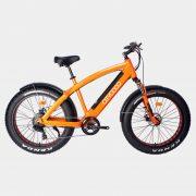 citycoco-elektrikli-bisiklet-fat-bike-kar-kalin-tekerlekli-elektrikli-bisiklet (3)
