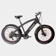 citycoco-elektrikli-bisiklet-fat-bike-kar-kalin-tekerlekli-elektrikli-bisiklet (4)
