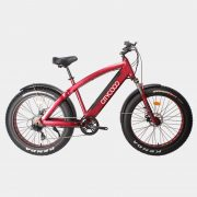 citycoco-elektrikli-bisiklet-fat-bike-kar-kalin-tekerlekli-elektrikli-bisiklet (5)